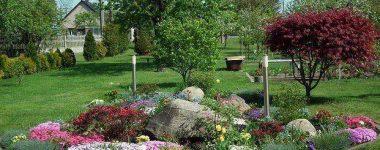 Súťaž/Contest Najkrajšia dažďová záhrada/Most pretty Raingarden