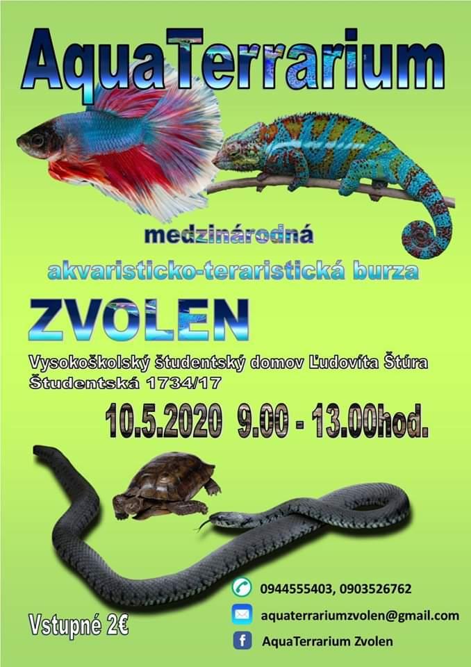 AquaTerrarium Zvolen 10.5.2020