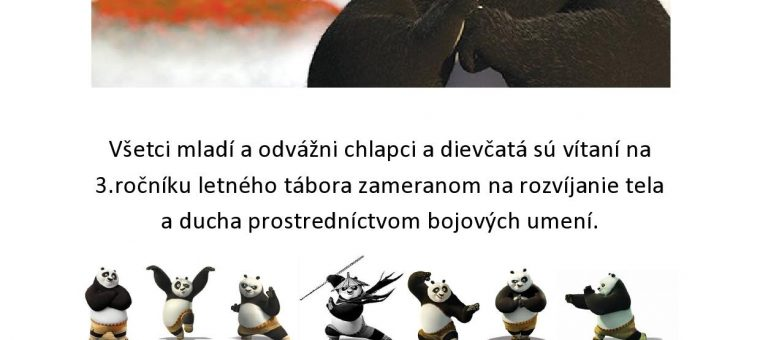 Denný Letný Tábor pre Deti Aikido Považská Bystrica