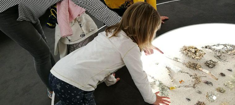 Príroda Turca deťom SNM v Martine - Múzeum Andreja Kmeťa