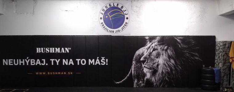 Kings of Jungle Sub Only Tournament Jungle Bjj Bratislava