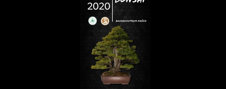 Cassovia Bonsai - výstava bonsajov Botanická Záhrada UPJŠ